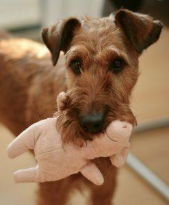 juguete para perros de peluche