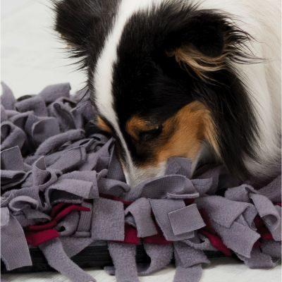 alfombra olfativa para perros comprar ofertas opiniones barato alfombras para perros alfombra olfativa snuffle mat alfombra de olfato para perros comprar alfombra de olfato para perros oferta Como hacer una alfombra olfativa para perros