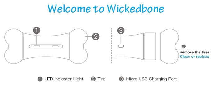 wickedbone characteristics