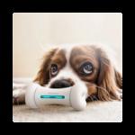 wickedbone juguete interactivo para perros comprar ofertas opiniones juguete inteligente para perros