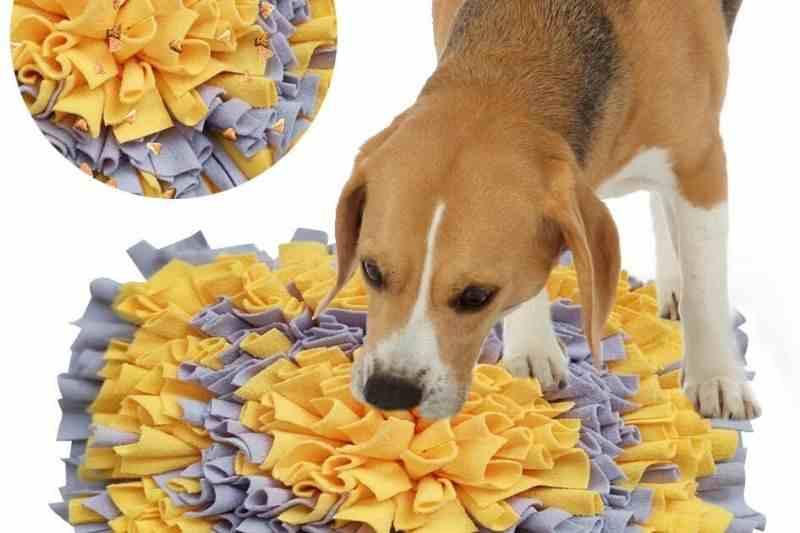 juguetes para beagle comprar precio oferta opiniones alfombra olfativa pets puppies