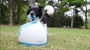 lanzador de pelotas para perros comprar ofertas comprar lanzador de pelotas para perros automaticos grandes pequeños cachorros