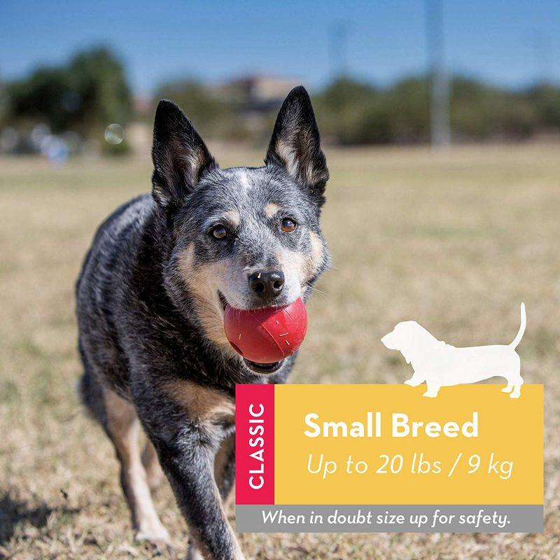 pelotas para perros irrompibles comprar ofertas precios opiniones baratas comprar pelotas para perros irrompibles para pitbull perros de presa perros grandes