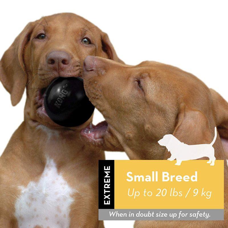 pelotas para perros irrompibles comprar ofertas precios opiniones comprar pelotas para perros irrompibles resistentes duraderas para pitbull perros de presa prerros grandes