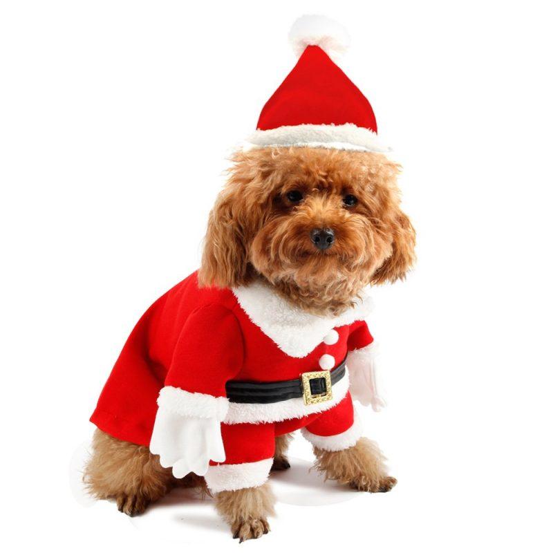 disfraz de papa noel para perros comprar ofertas precios opiniones baratos comprar disfraz de papa noel para perros grandes pequeños chihuahua trajes disfraces vestidos de navidad papa noel