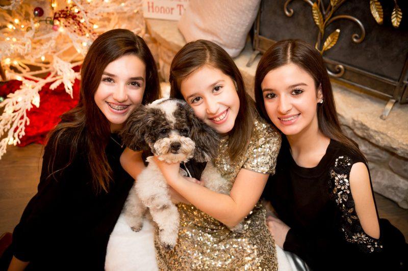 juguetes de navidad para perros comprar ofertas precios baratos opiniones comprar juguetes navideños para perros regalos para perros navidad