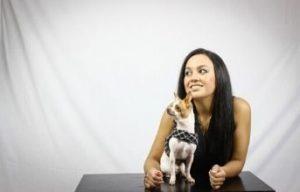 juguetes para perros chihuahua cachorros los mejores comprar oferta precio opiniones tienda online amazon