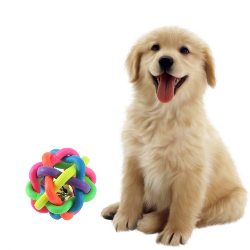 juguetes para perros con sonido comprar ofertas opiniones comprar juguete con sonido para perros grandes pequeños de presa pitbull ciegos pelotas peluches mordedores con sonido