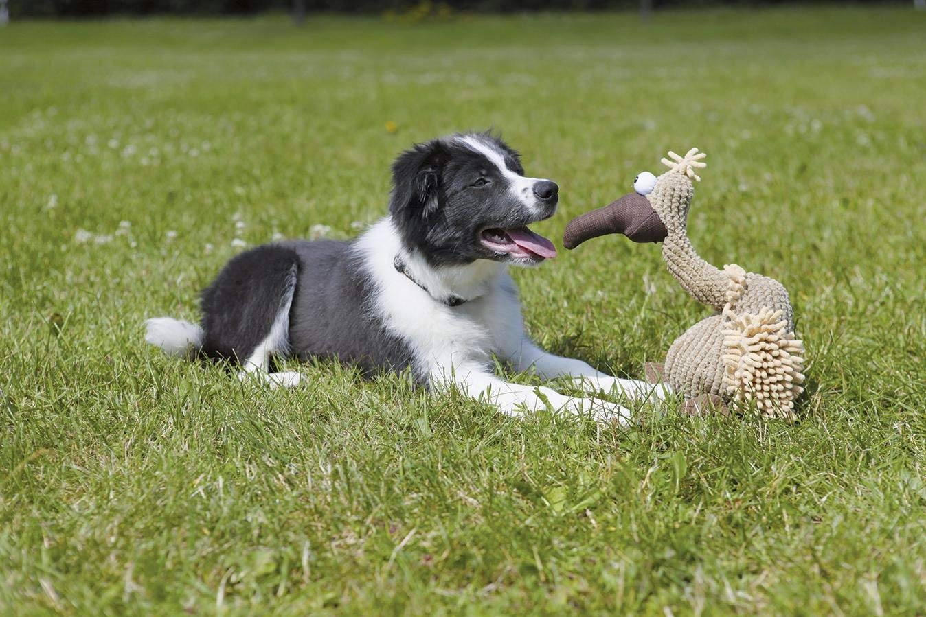 Juguetes para perros Trixie perros online catalogo barato comprar ofertas opiniones pelotas peluches juguetes para perros divertidos irrompibles resistentes