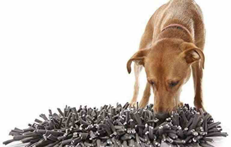 zicosy snuffle mat juguetes interactivos para perros alfombra olfativa snuffle mat casero a mano paso a paso