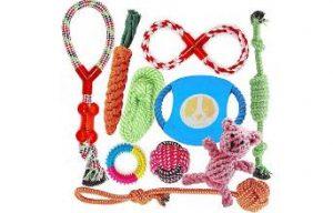 juguetes-para-perros-chihuahua-Los-juguetes-mas-apropiados-para-y-que-mas-le-gustan-a-un-chihuahua-Pack-juguetes-cuerda-chihuahua-los-mejores-juguetes-para-perros-chihuahua comprar ofertas opiniones precio comparativas tienda online amazon los mejores juguetes para chihuahua