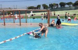 piscinas para perros barcelona can jane