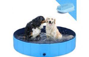 piscinas para perros gostock comprar precio oferta opiniones barata catalogo comparativa guia de compra tienda online las mejores piscinas para perros